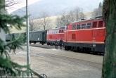 2143 022 und 025 im Bahnhof Freiland